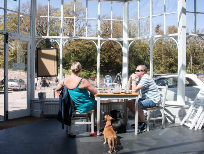 dog-friendly-cafe