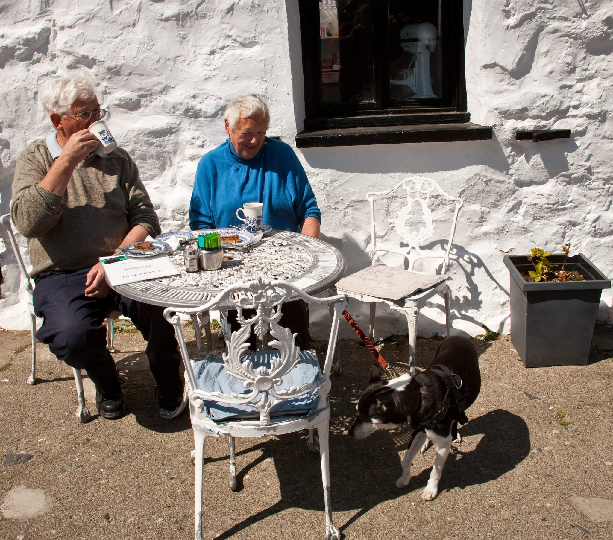 Dog-Friendly Cafe Anglesey