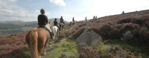 Snowdonia Horse Riding