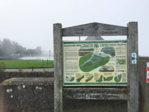 Llanfairfechan Nature Reserve