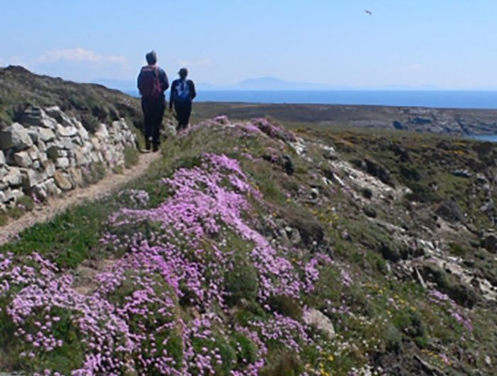 anglesey walking festival