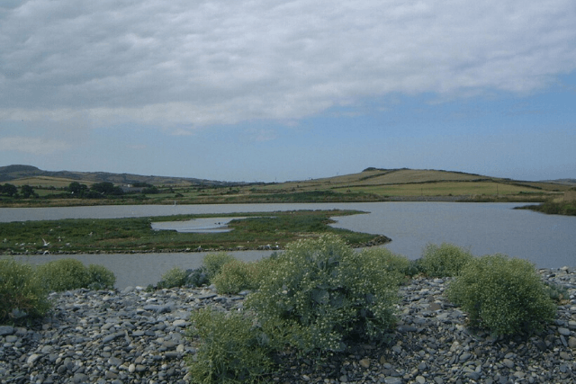 Cemlyn Bay Lagoon